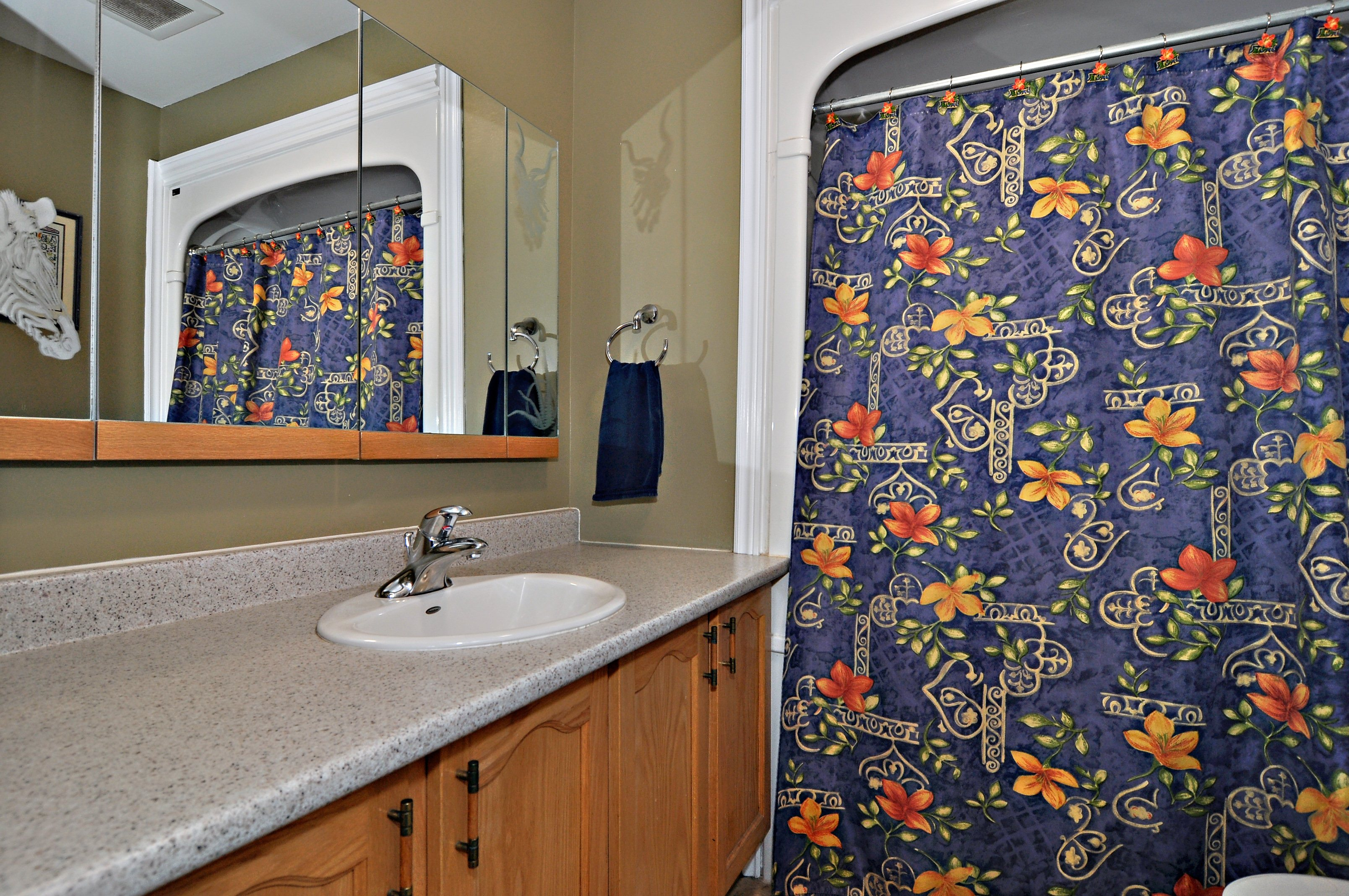 13_tripp_crescent_mls_hid746807_roommainbathroom